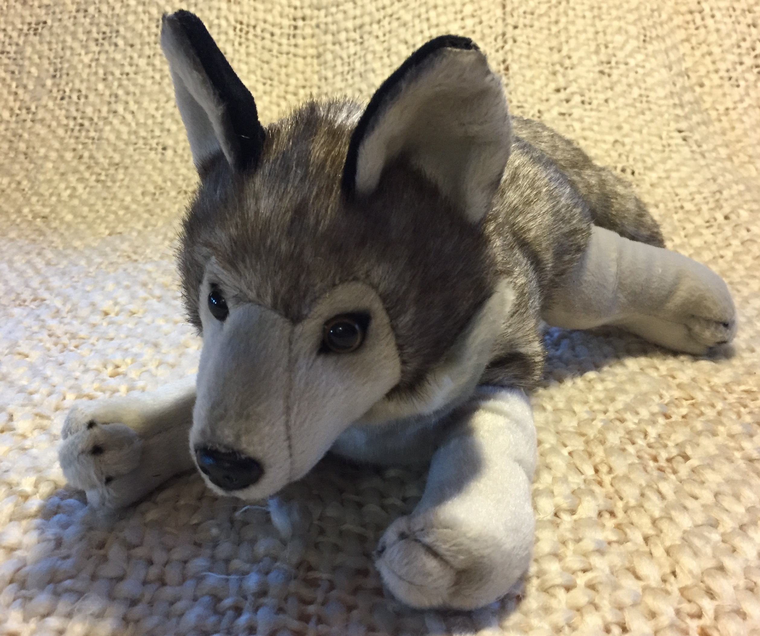 Laying wolf plush