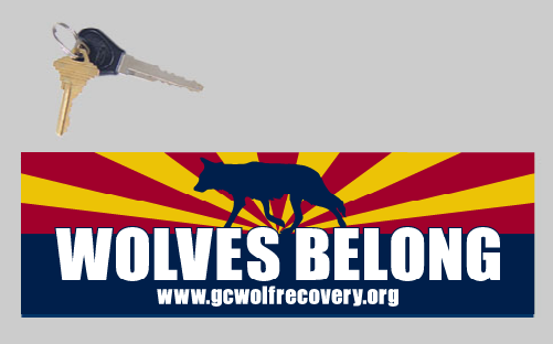Wolves Belong in AZ bumper sticker