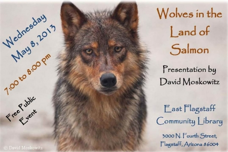 Wolves in the Land of Salmon presentation image