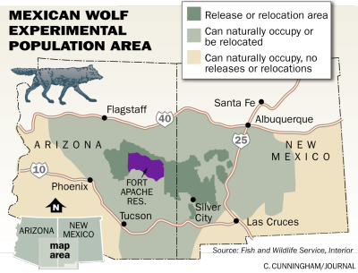 Grand Canyon Wolf Recovery Project Act Now US Fish And Wildlife - Maps of the location of wolves in the us